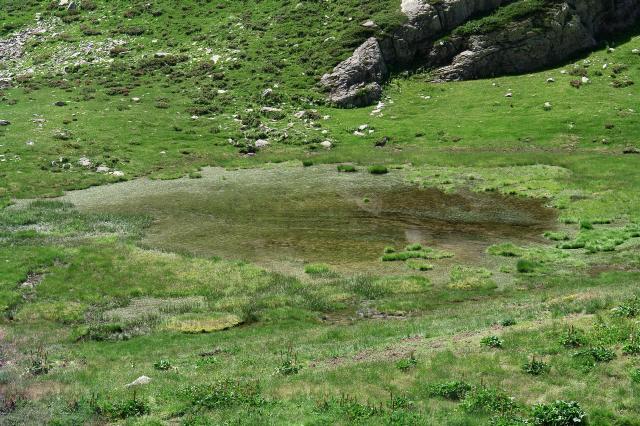 Cima del lago carbon e lago vej del bouc da san giacomo for Piccolo stagno